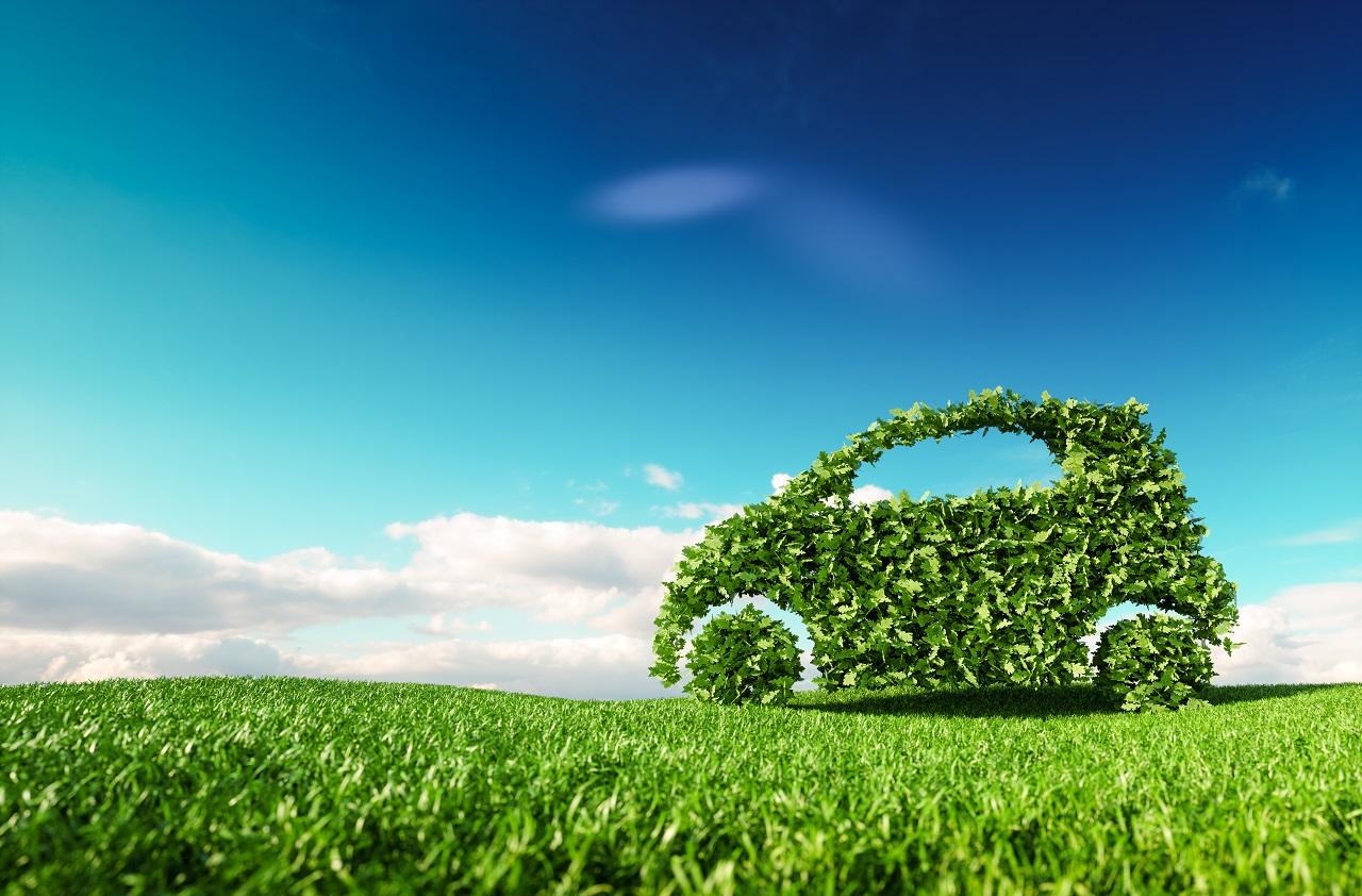 Pacte vert européen : bilan mitigé pour les ONG environnementales